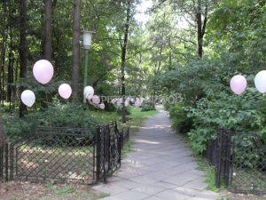 Гелиевые шарики на выкуп невесты